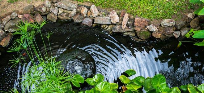 étang avec bordure en pierre