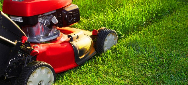 tondeuse à gazon poussée à travers les hautes herbes